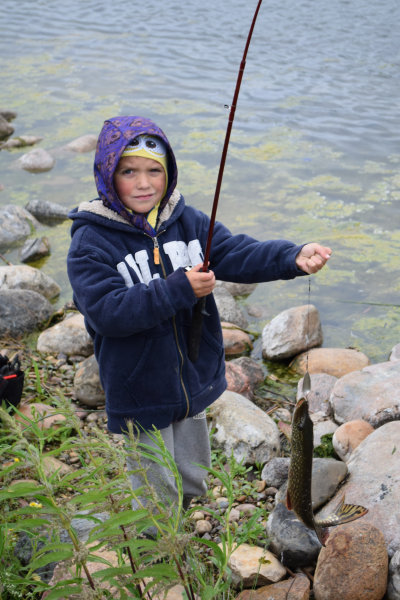 Pictured above is Logan Hinks. He and approximately 70 other children participated in the annual Knights of Columbus fishing derby at WInagami Lake on June 11. Watch for a story about the derby in the June 22 edition of Spotlight.