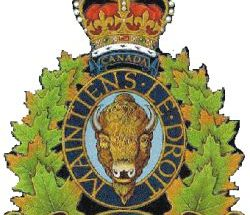 RCMP investigates wood theft from a private property