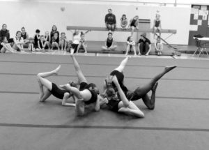 PIC – Achievement Day for local gymnasts