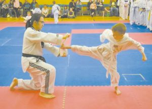 Taekwondo clubs hold end-of-season testing day