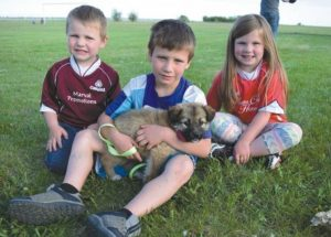 PIC – Kids and puppies go together