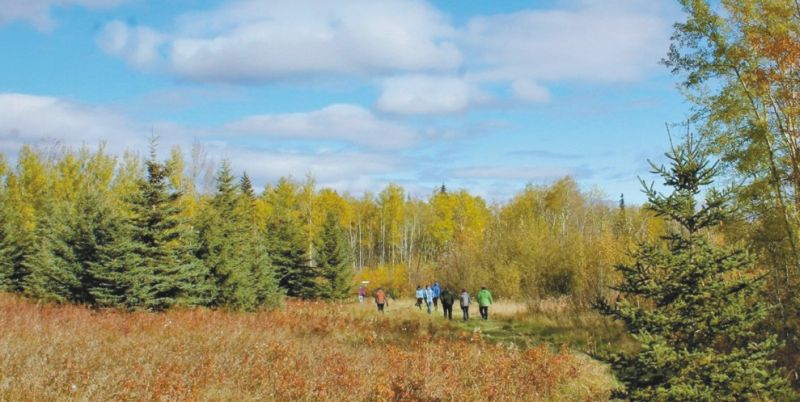O'Mahony Conservation Area annual hike reminds us that this natural reserve is open year round