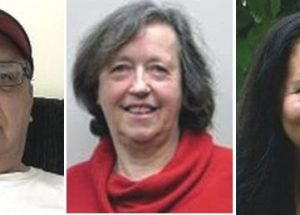3 vie for seat on McLennan town council