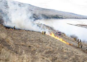 Controlled burns decrease hazard
