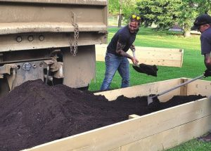 Community gardens take root in Falher