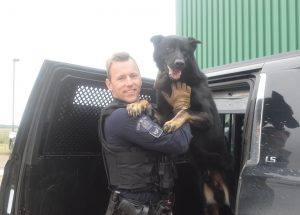 RCMP police dog shot, killed